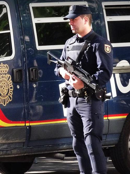 Bulging Cop Standing Guard