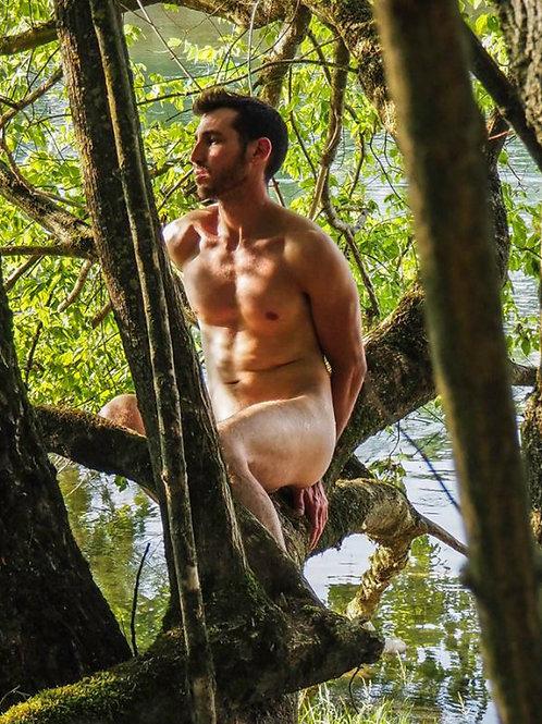 Nude on a Tree Limb