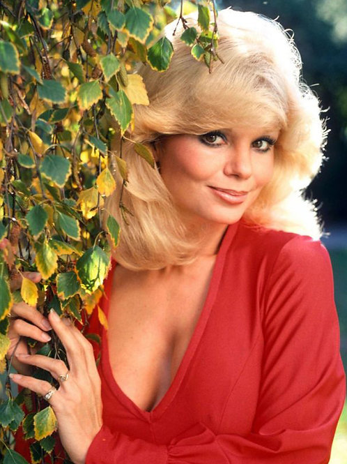 70s TV Actress Loni Anderson