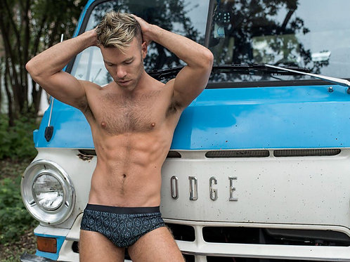 Hunk by a Vintage Dodge Van