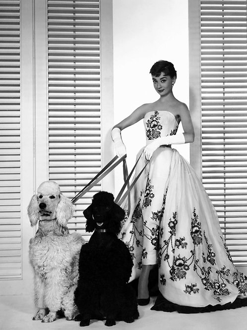 Audrey Hepburn with 2 Beautiful Dogs in the Movie Sabrina