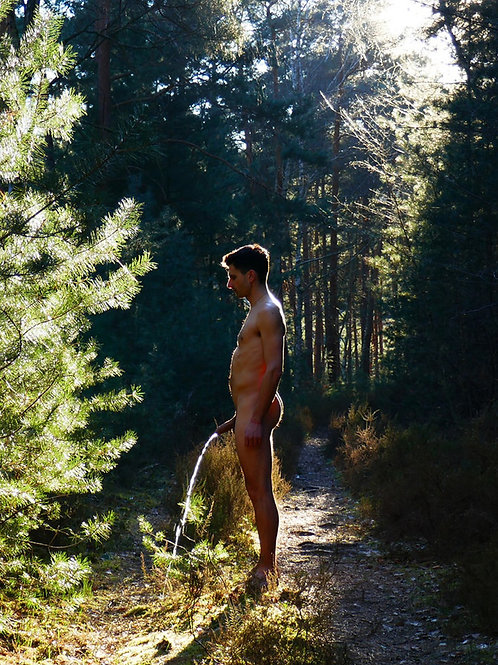 Peeing by a Sunny Pine Tree