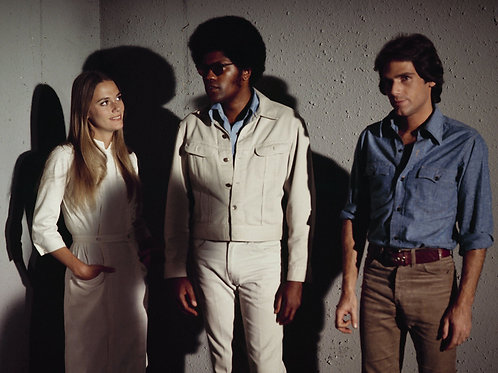 Cast of the Mod Squad