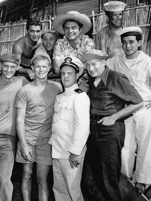 Cast of Mchales Navy