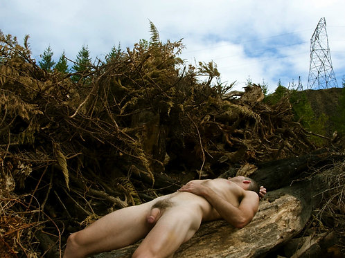 Naked on a Fallen Tree