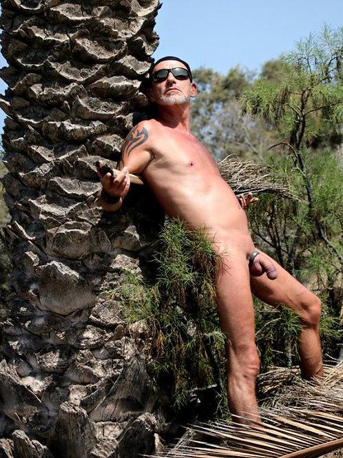 Thick Palm Tree