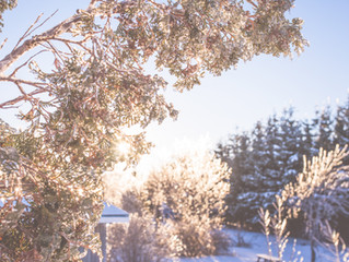 How to Winterize Your Water System