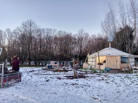 LKK: De Lokale Korte Keten! - van bio-veld naar valentijnsbord <3