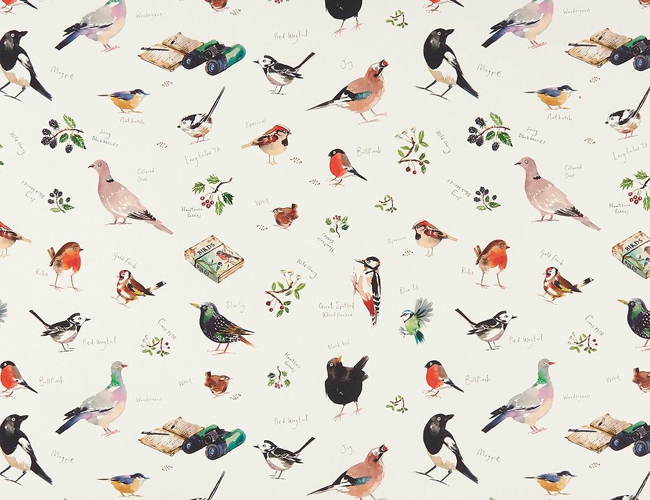 BIRD-WATCH-CREAM-F1257-01-1_edited.png