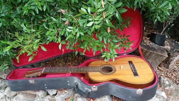 guitarra_jardín.jpg