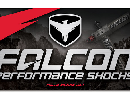 What Makes Falcon Shocks Unique?