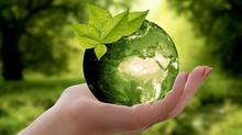 Sauvez la planète, faite des œufs!