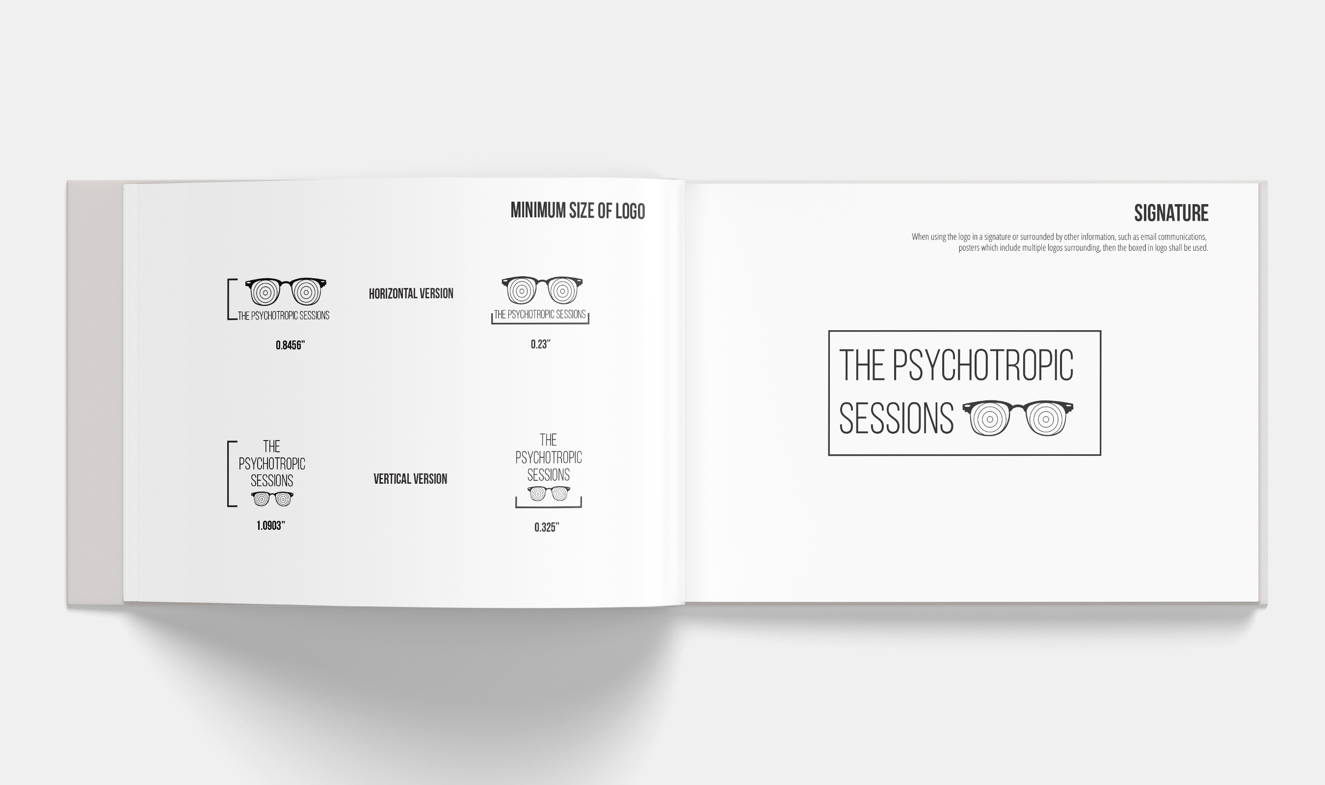graphic-standards-festival-sample-info