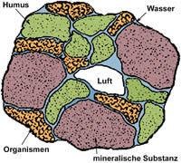 Grafik Ton-Humus-Komplex