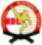 nbl color logo.jpg