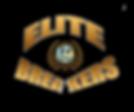 elite breakers 3.png