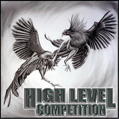 High Level Virtual Competition