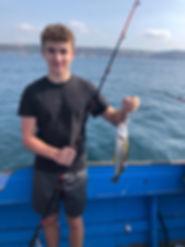 Mackerel fishing out at sea