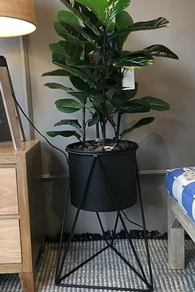 Matera Tripode Negra Large con Planta Natural