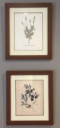 Lamina Botanicas Set x 2