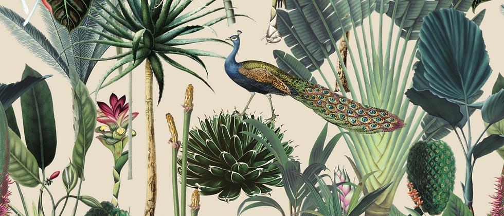 Botanika Collection