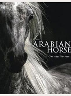 Libro Arabian Horse