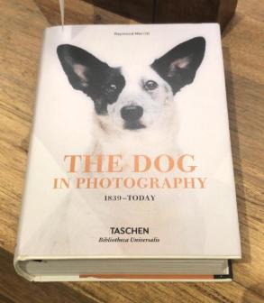 Libro Taschen Colección