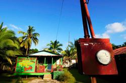 Tortuguero, la petite amazonie