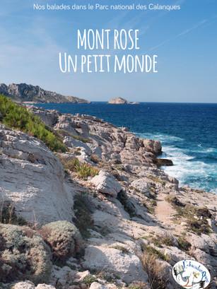 Mont Rose, un petit monde