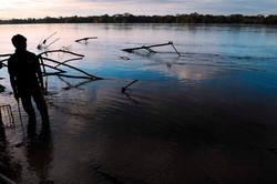 Au coeur de Yasuni - fleuve Napo