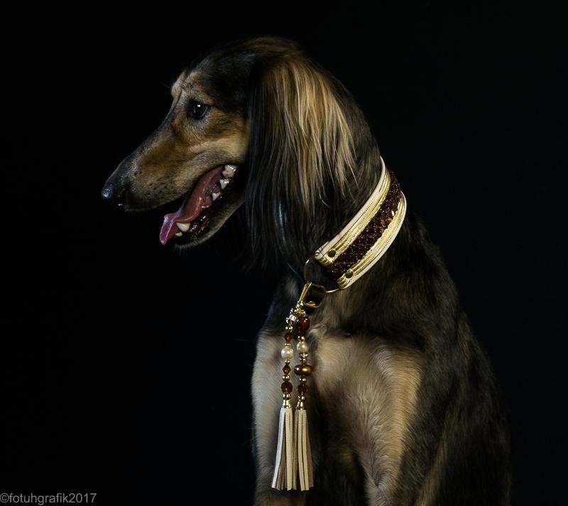 Doggy 4-293
