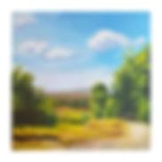 יער המגינים.jpg