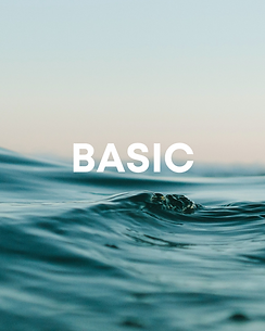 Copy of BASIC.png