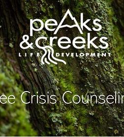 Free Crisis Counseling.jpg