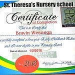 Brevin Certificate_edited.jpg