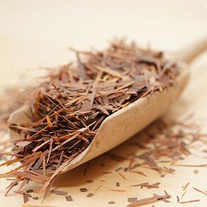 Mein Wundermittel, Lapacho-Tee