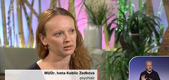 Iveta Koblic, INEP