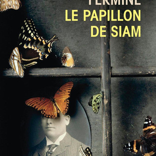 """Le Papillon de Siam"" de Maxence Fermine"