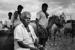 Cattle Fair © Mousty.in