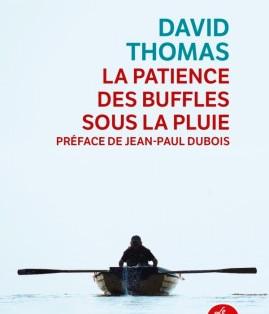 """""""La patience des buffles sous la pluie"""" de David Thomas"""