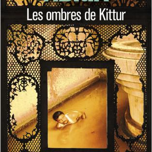 """""""Les ombres de Kittur"""" de Aravind Adiga"""