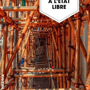 """""""A l'État Libre"""" de Neel Mukherjee"""