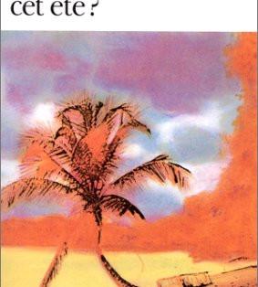 """""""Où irons-nous cet été"""" de Anita Desai"""