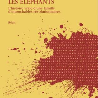 """""""Des Fourmis parmi les éléphants"""" de Sujatha Gidla"""
