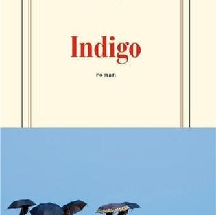 """""""Indigo"""" de Catherine Cusset"""