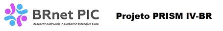 Logo BRnet-PIC (designer) 2.png