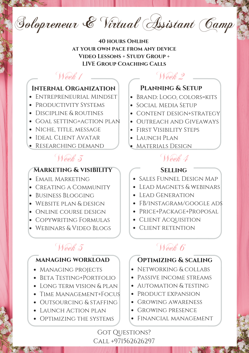 Online Solopreneur Camp Schedule.png