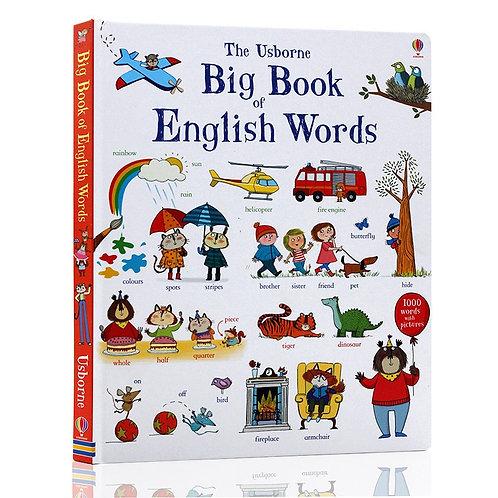 New the Usborne Big Book of English Words