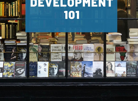 DonnaInk Publications, L.L.C. soon to release Book Development 101, by Ms. Donna L. Quesinberry
