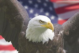 America_edited.jpg